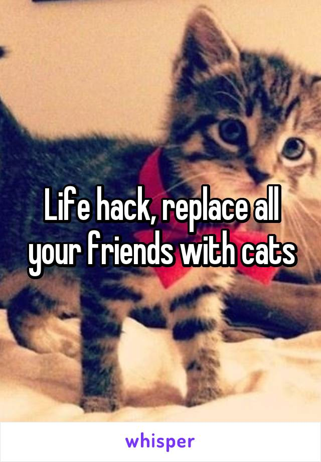 Life hack, replace all your friends with cats