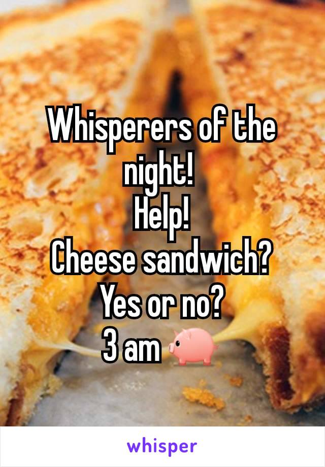 Whisperers of the  night!  Help! Cheese sandwich? Yes or no? 3 am 🐖