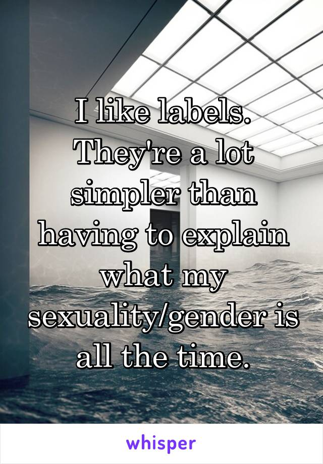 I like labels. They're a lot simpler than having to explain what my sexuality/gender is all the time.