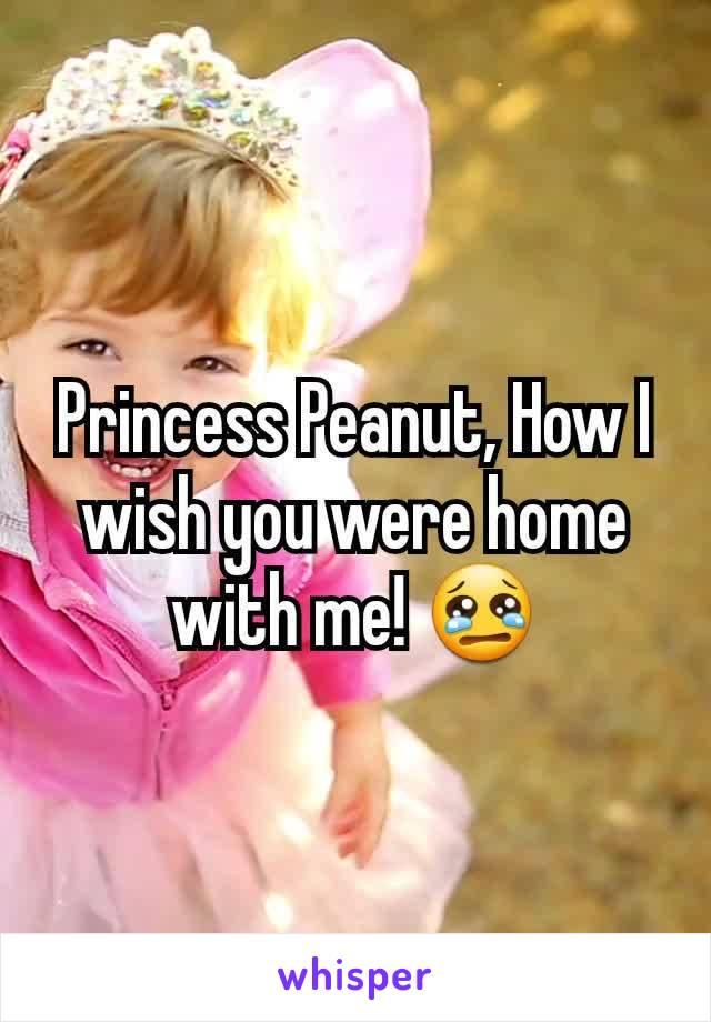 Princess Peanut, How I wish you were home with me! 😢
