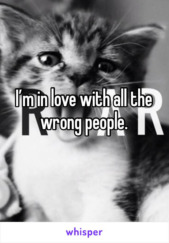I'm in love with all the wrong people.