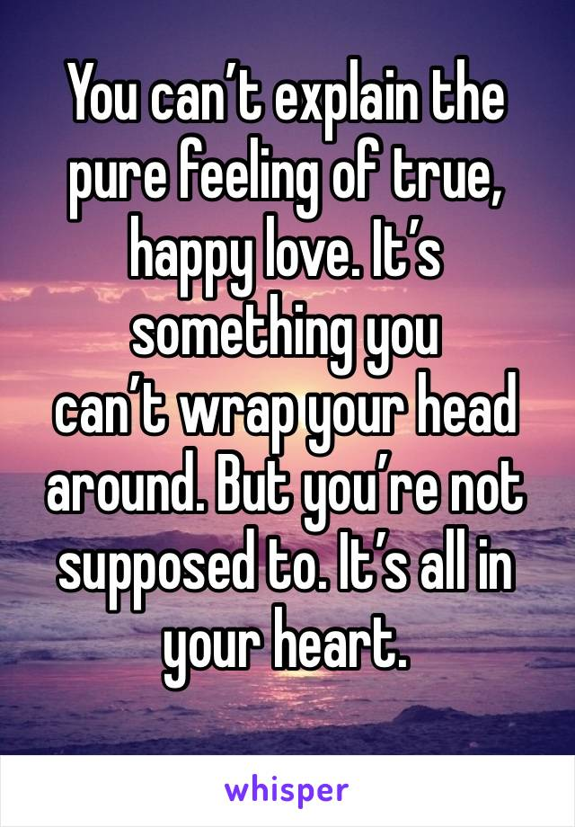 You can't explain the pure feeling of true, happy love. It's something you  can't wrap your head around. But you're not supposed to. It's all in your heart.