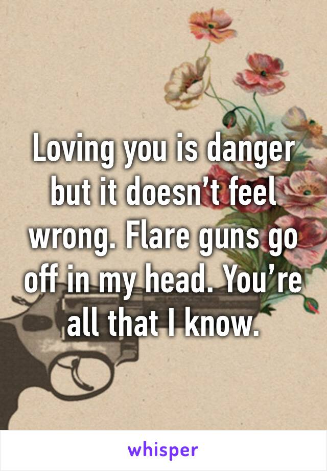 Loving you is danger but it doesn't feel wrong. Flare guns go off in my head. You're all that I know.