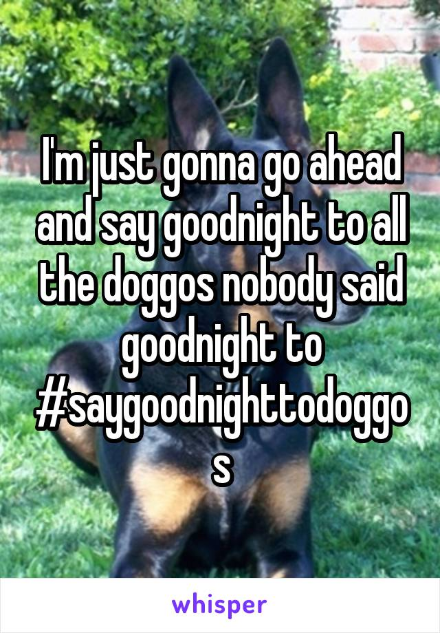 I'm just gonna go ahead and say goodnight to all the doggos nobody said goodnight to #saygoodnighttodoggos