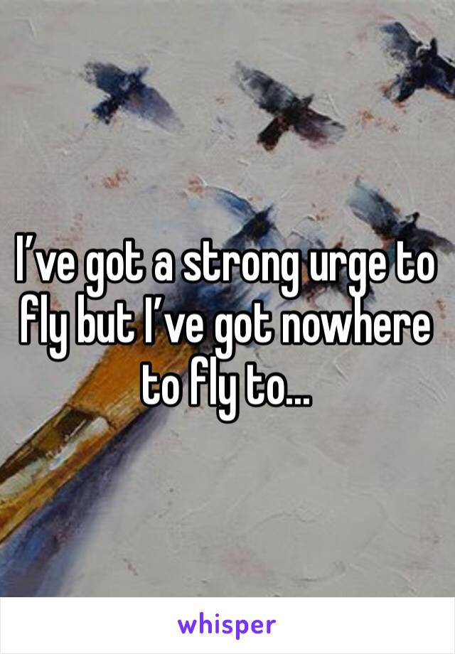 I've got a strong urge to fly but I've got nowhere to fly to...