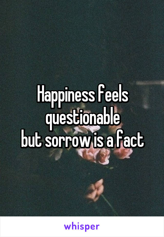 Happiness feels questionable but sorrow is a fact