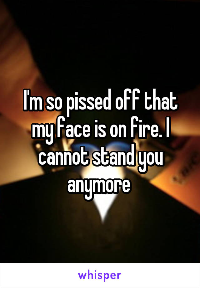 I'm so pissed off that my face is on fire. I cannot stand you anymore