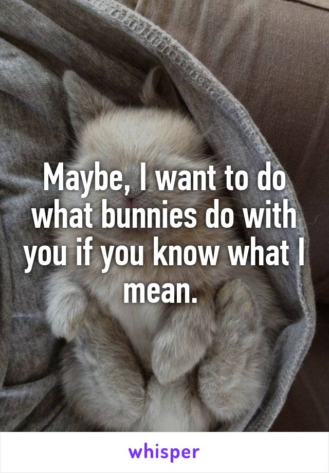Maybe, I want to do what bunnies do with you if you know what I mean.