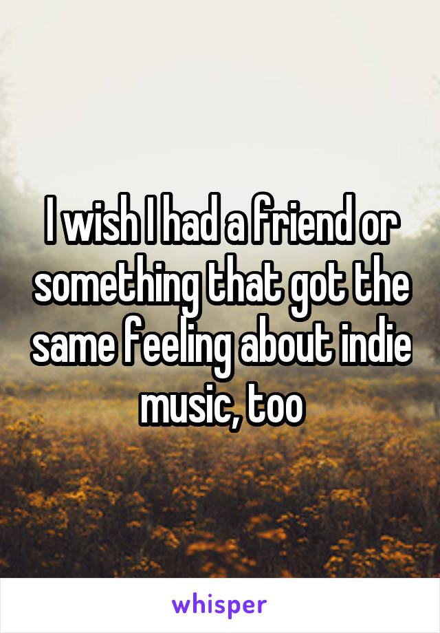 I wish I had a friend or something that got the same feeling about indie music, too