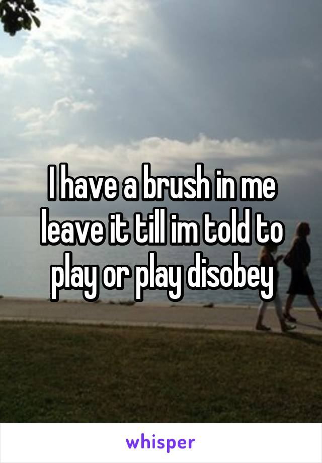 I have a brush in me leave it till im told to play or play disobey