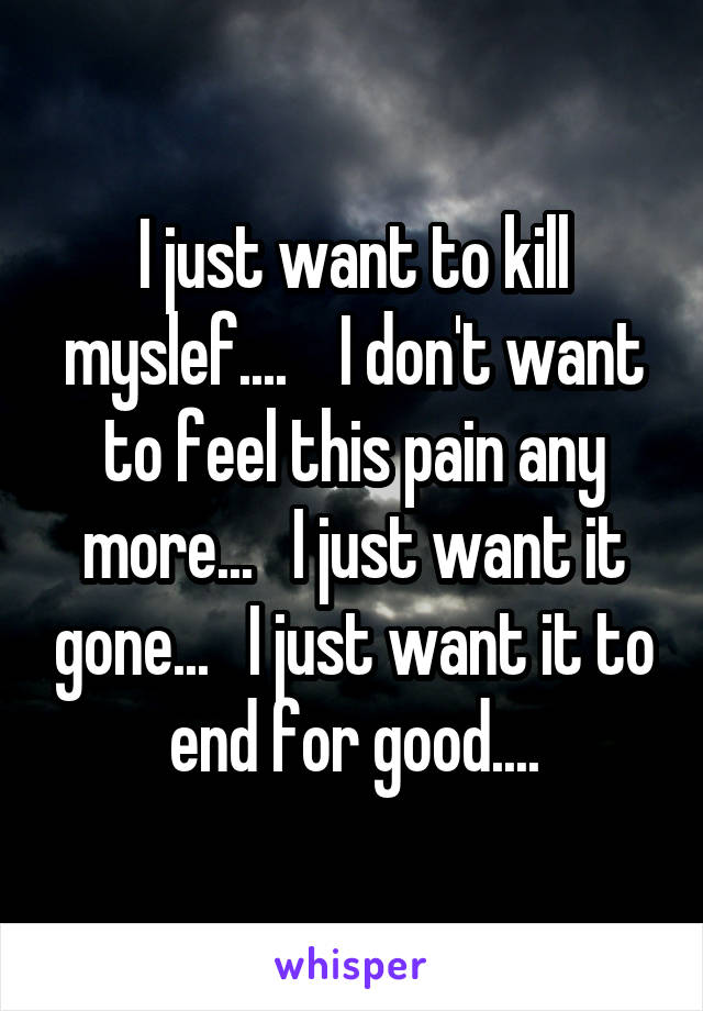 I just want to kill myslef....    I don't want to feel this pain any more...   I just want it gone...   I just want it to end for good....