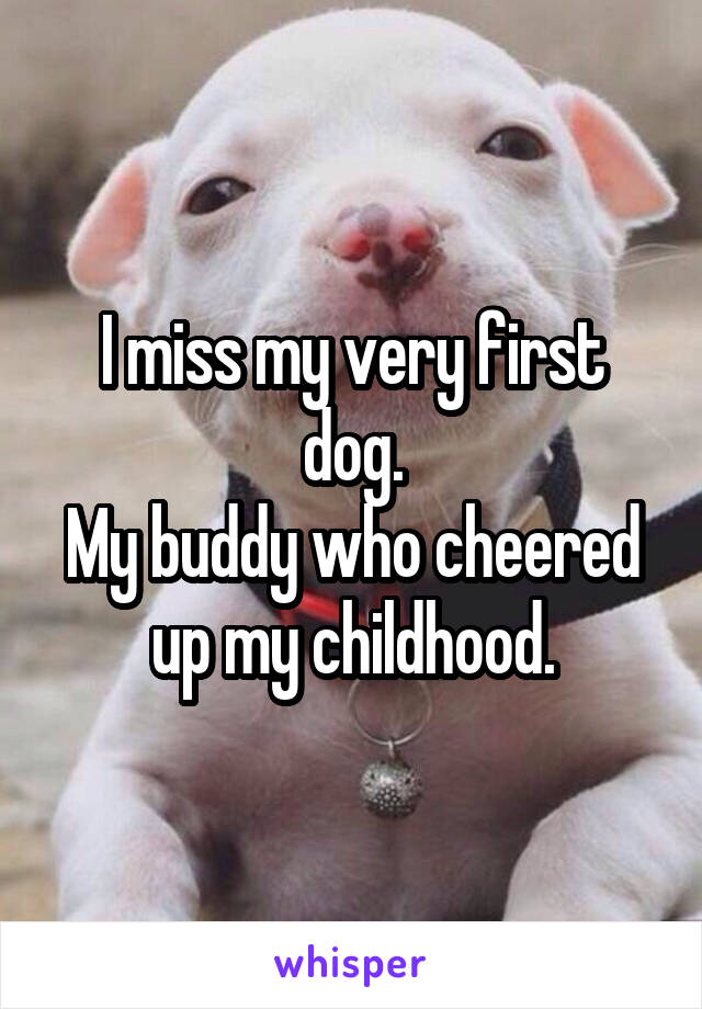 I miss my very first dog. My buddy who cheered up my childhood.