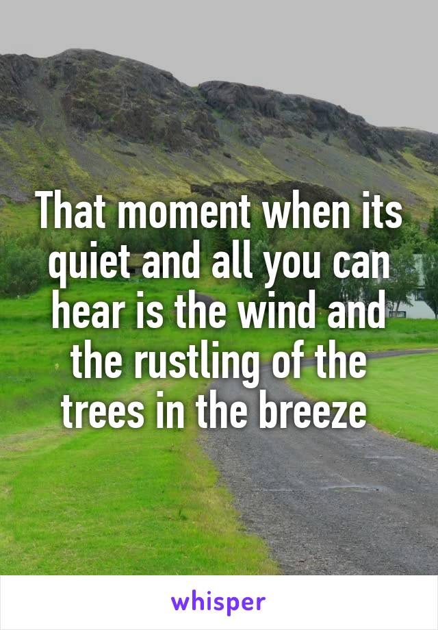 That moment when its quiet and all you can hear is the wind and the rustling of the trees in the breeze