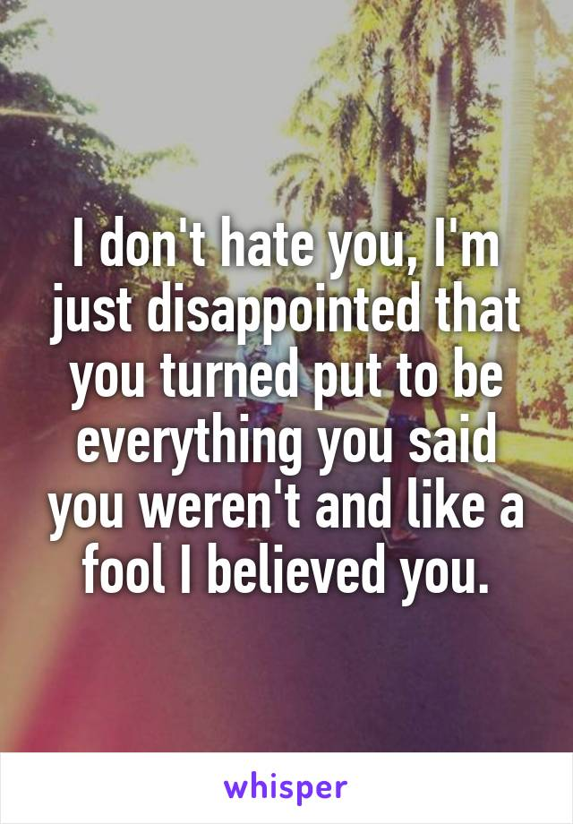 I don't hate you, I'm just disappointed that you turned put to be everything you said you weren't and like a fool I believed you.