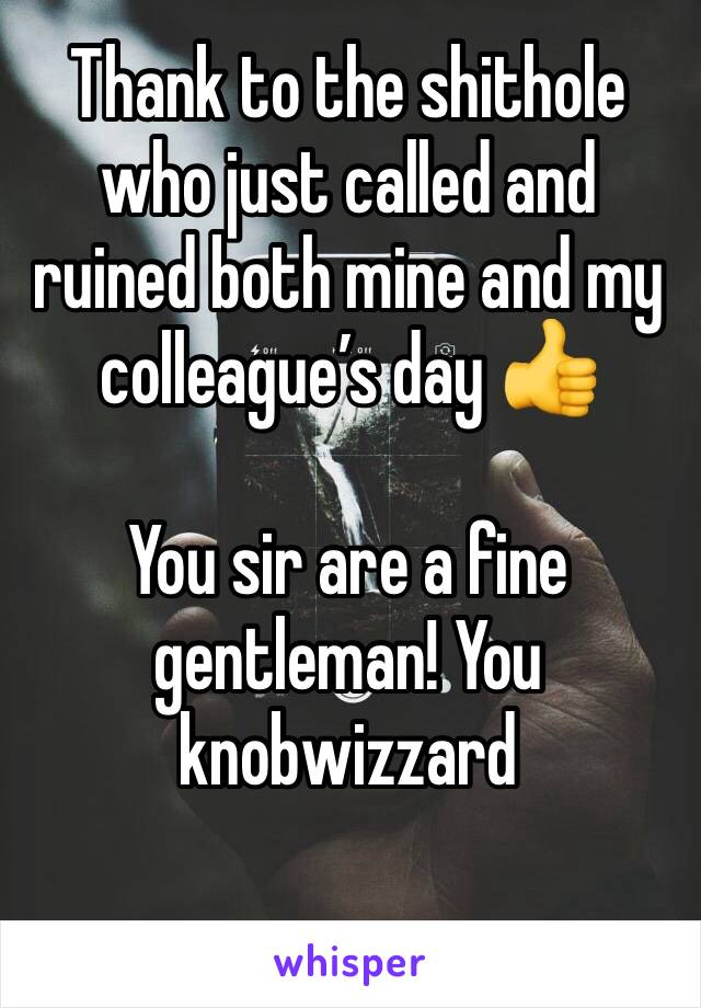 Thank to the shithole who just called and ruined both mine and my colleague's day 👍   You sir are a fine gentleman! You knobwizzard