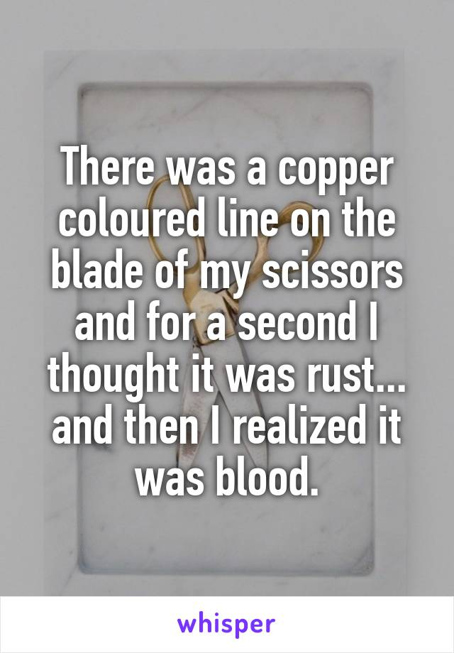 There was a copper coloured line on the blade of my scissors and for a second I thought it was rust... and then I realized it was blood.