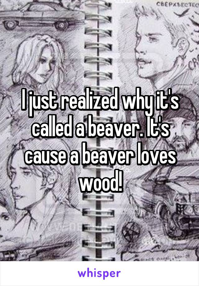 I just realized why it's called a beaver. It's cause a beaver loves wood!