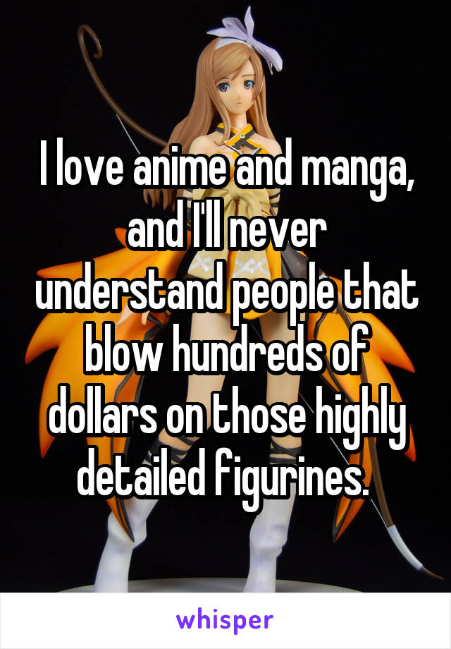 I love anime and manga, and I'll never understand people that blow hundreds of dollars on those highly detailed figurines.
