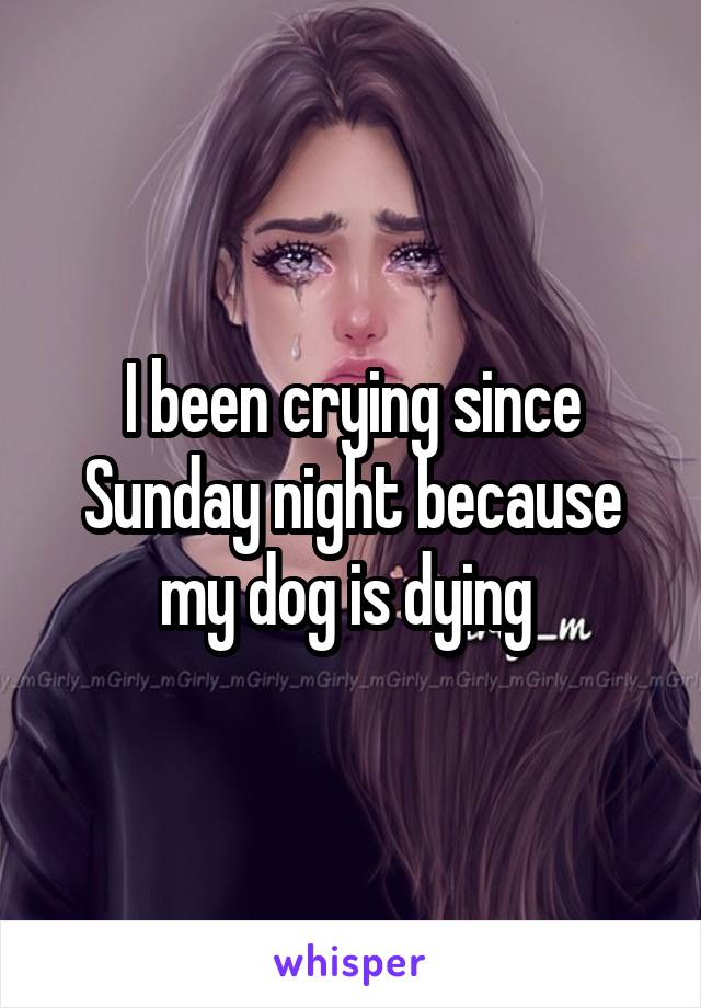 I been crying since Sunday night because my dog is dying
