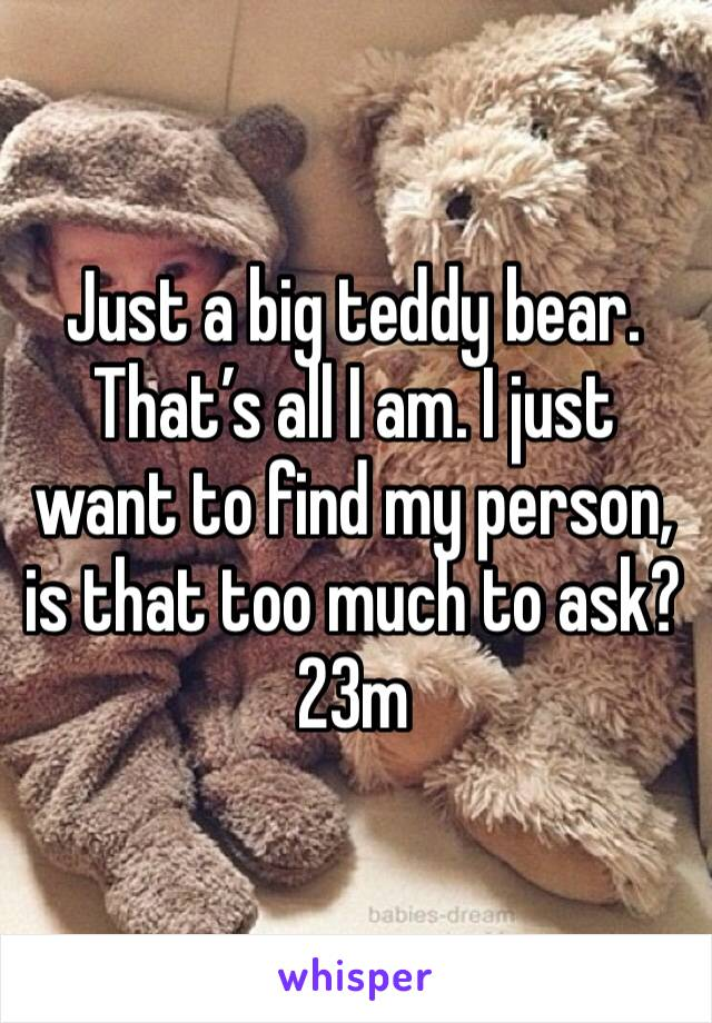 Just a big teddy bear. That's all I am. I just want to find my person, is that too much to ask? 23m