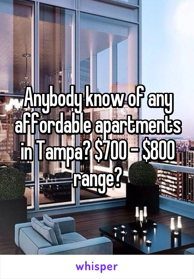 Anybody know of any affordable apartments in Tampa? $700 - $800 range?