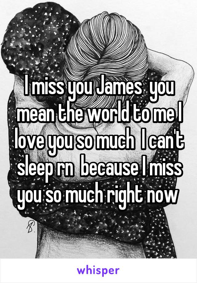I miss you James  you mean the world to me I love you so much  I can't sleep rn  because I miss you so much right now