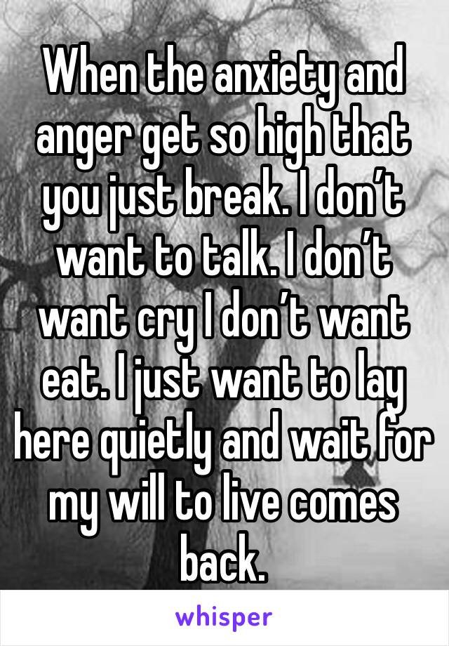 When the anxiety and anger get so high that you just break. I don't want to talk. I don't want cry I don't want eat. I just want to lay here quietly and wait for my will to live comes back.