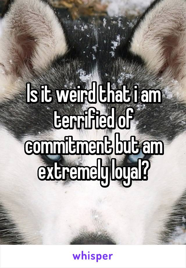 Is it weird that i am terrified of commitment but am extremely loyal?