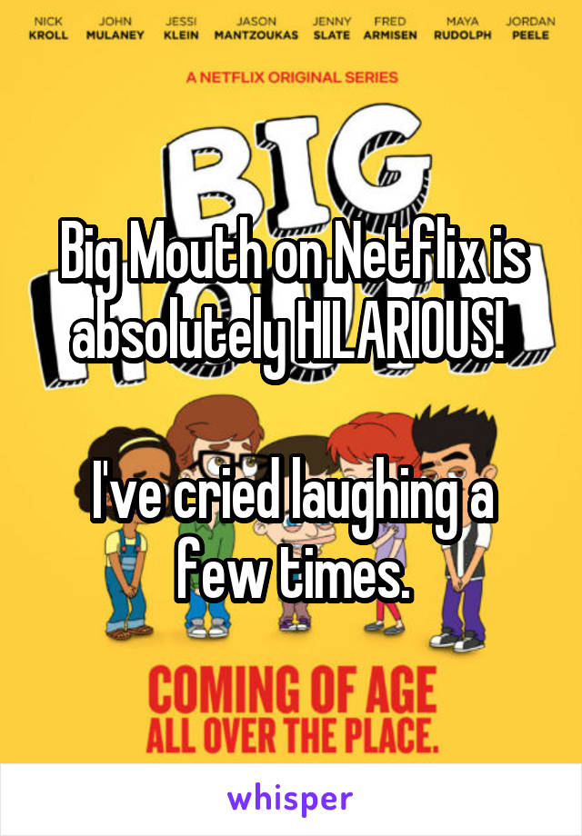 Big Mouth on Netflix is absolutely HILARIOUS!   I've cried laughing a few times.