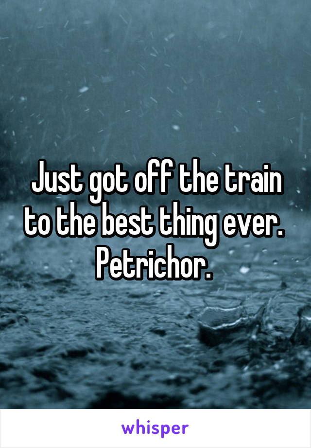 Just got off the train to the best thing ever.  Petrichor.
