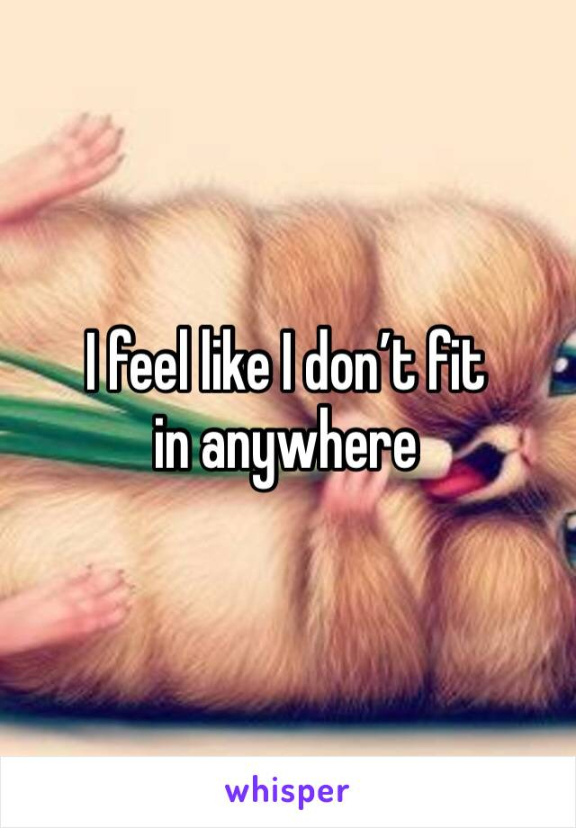 I feel like I don't fit in anywhere