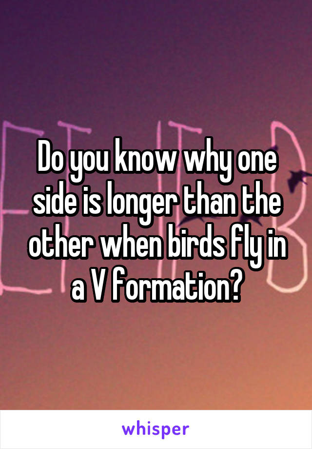 Do you know why one side is longer than the other when birds fly in a V formation?