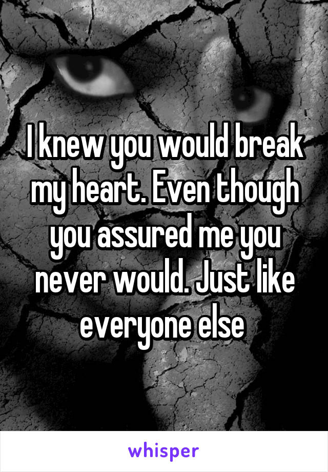I knew you would break my heart. Even though you assured me you never would. Just like everyone else