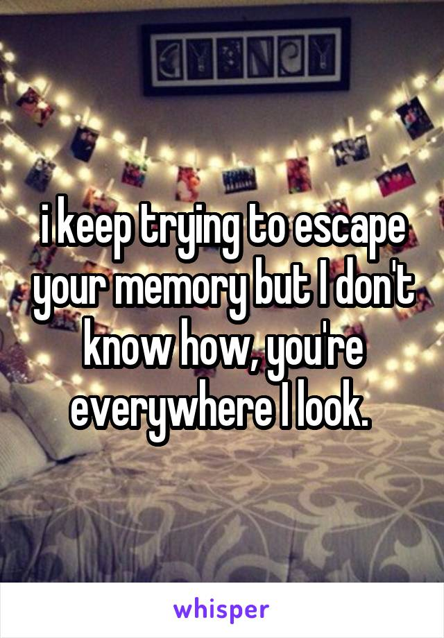 i keep trying to escape your memory but I don't know how, you're everywhere I look.