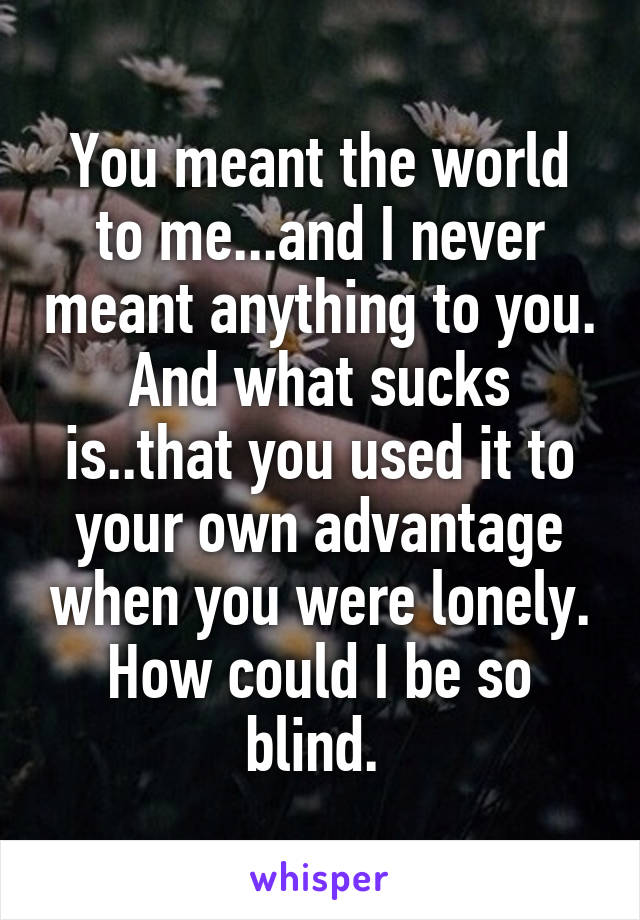 You meant the world to me...and I never meant anything to you. And what sucks is..that you used it to your own advantage when you were lonely. How could I be so blind.