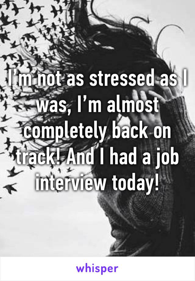 I'm not as stressed as I was, I'm almost completely back on track! And I had a job interview today!