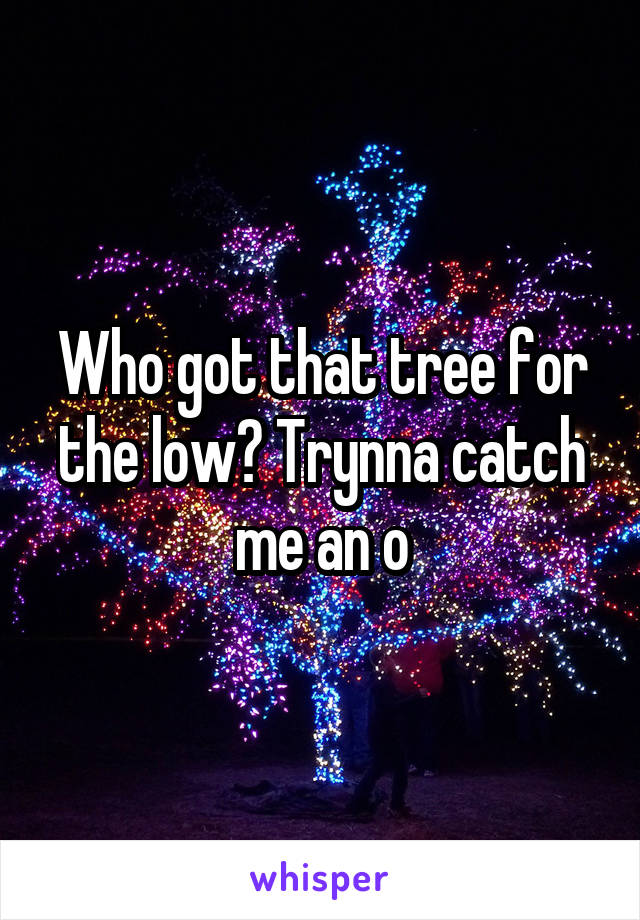 Who got that tree for the low? Trynna catch me an o
