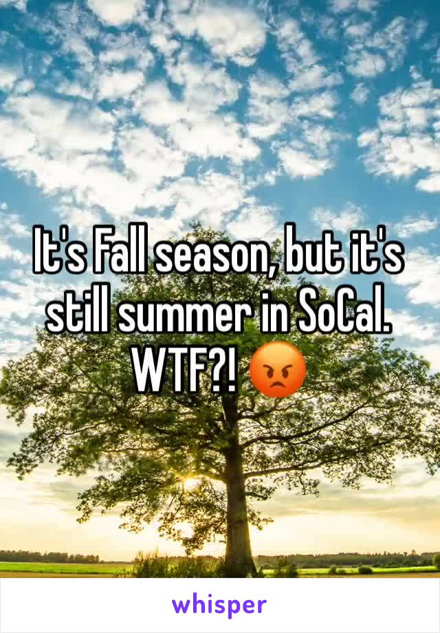 It's Fall season, but it's still summer in SoCal. WTF?! 😡