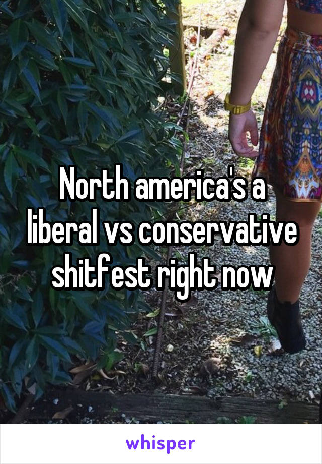 North america's a liberal vs conservative shitfest right now