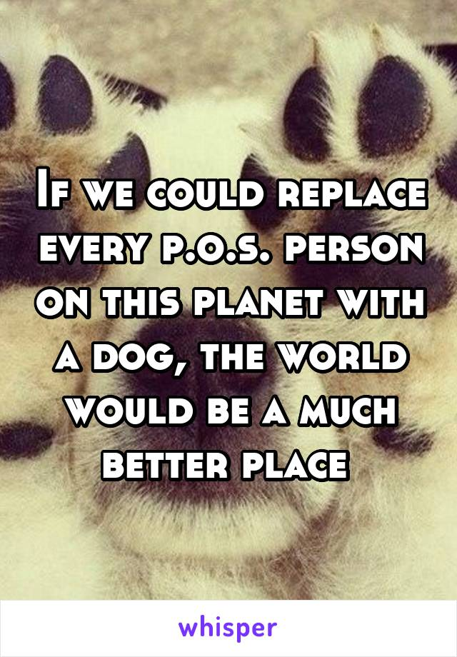 If we could replace every p.o.s. person on this planet with a dog, the world would be a much better place