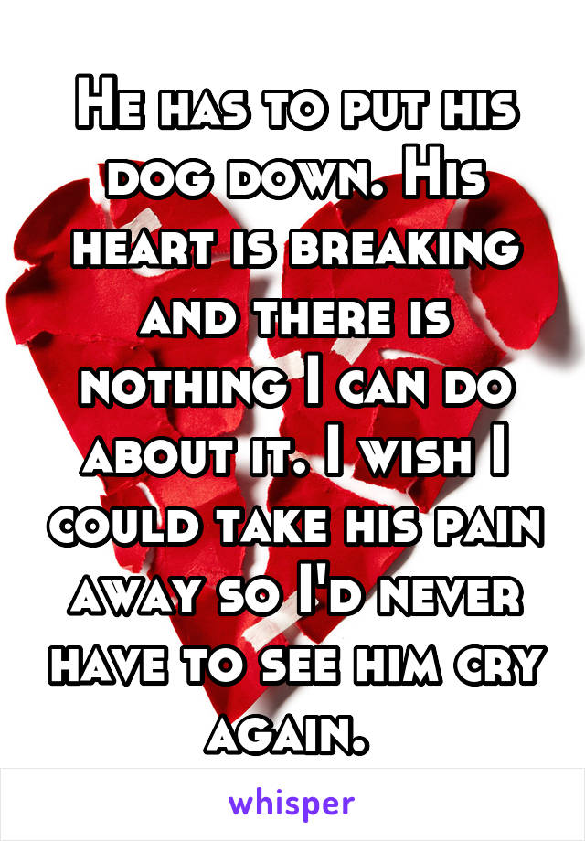 He has to put his dog down. His heart is breaking and there is nothing I can do about it. I wish I could take his pain away so I'd never have to see him cry again.