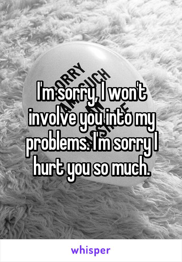 I'm sorry, I won't involve you into my problems. I'm sorry I hurt you so much.