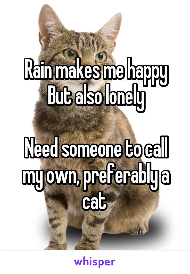 Rain makes me happy But also lonely  Need someone to call my own, preferably a cat