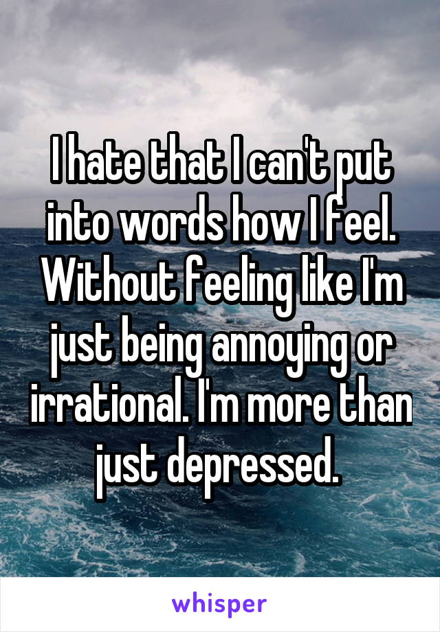 I hate that I can't put into words how I feel. Without feeling like I'm just being annoying or irrational. I'm more than just depressed.