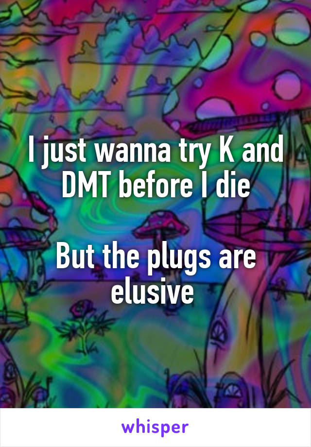 I just wanna try K and DMT before I die  But the plugs are elusive
