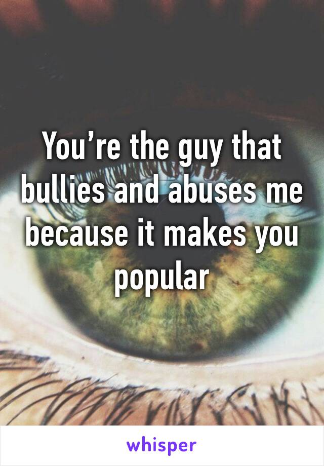 You're the guy that bullies and abuses me because it makes you popular