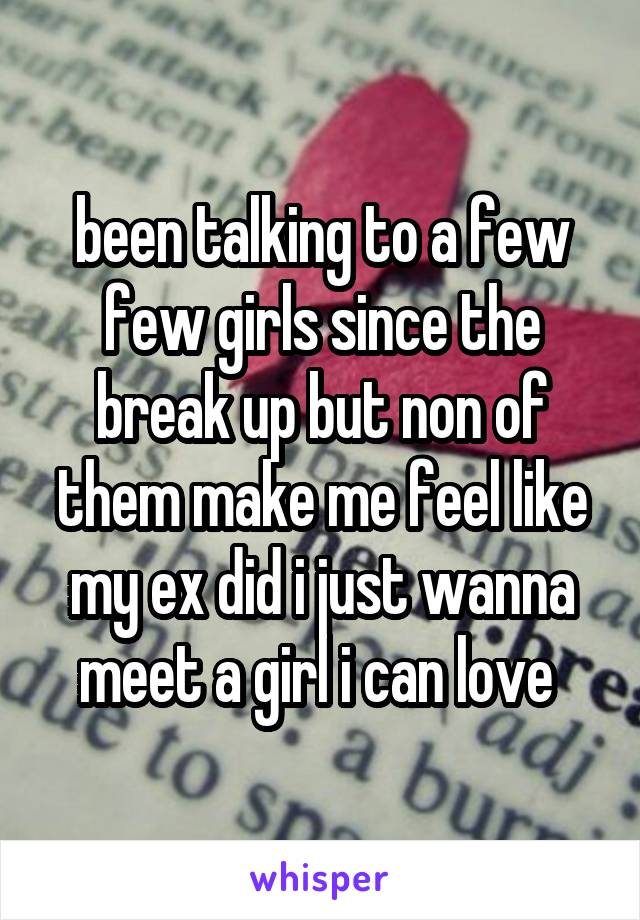 been talking to a few few girls since the break up but non of them make me feel like my ex did i just wanna meet a girl i can love