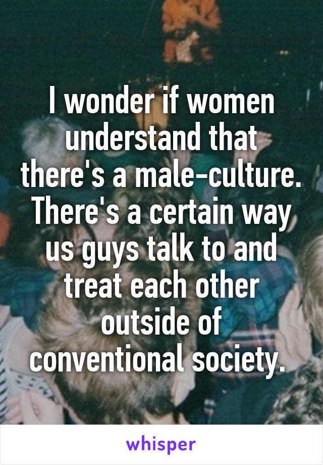 I wonder if women understand that there's a male-culture. There's a certain way us guys talk to and treat each other outside of conventional society.