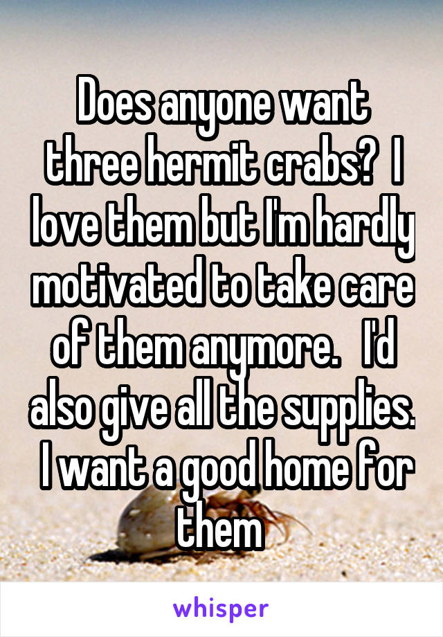 Does anyone want three hermit crabs?  I love them but I'm hardly motivated to take care of them anymore.   I'd also give all the supplies.  I want a good home for them