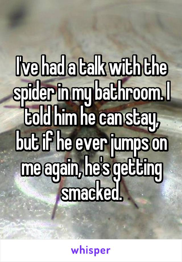 I've had a talk with the spider in my bathroom. I told him he can stay, but if he ever jumps on me again, he's getting smacked.